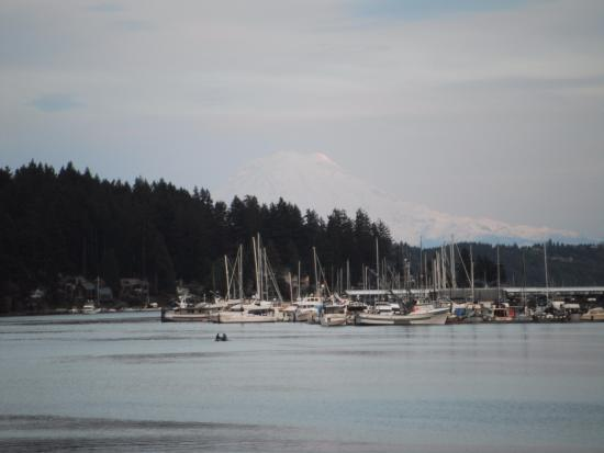 Anthony's HomePort Gig Harbor: Zoom of Mount Rainier from viewing platform