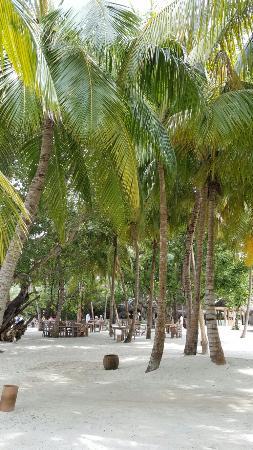 Kunfunadhoo: Soneva Fushi Resort