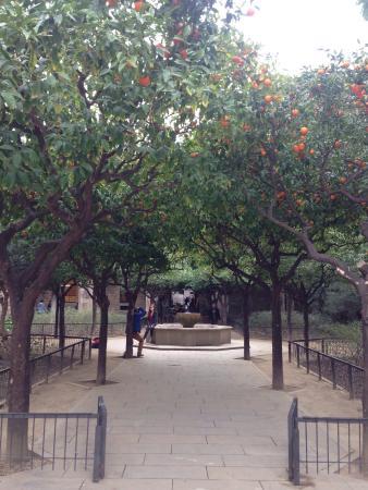 Jardins de Rubio i Lluch