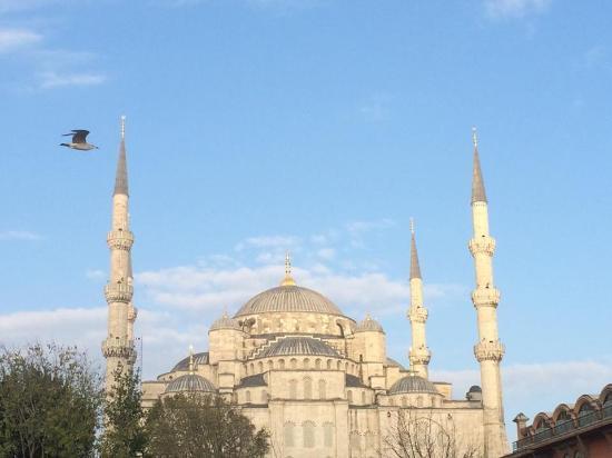 Hotel Darussaade Istanbul: Vista desde la terraza del desayuno