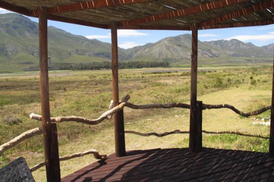 MOSAIC Lagoon Lodge: Aussicht vom Pavillon am Pool