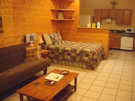 Leicester, Carolina del Norte: Angels Nest Retreat House livingroom with second double bed