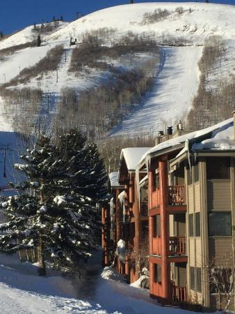 Snow Flower Condominiums: View of the mountain slopes from base of Units