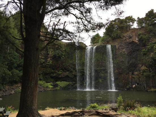 Whangarei, Nueva Zelanda: falls from the bottom of the trail