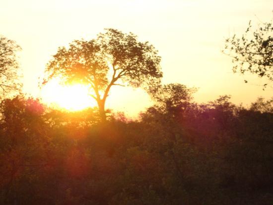Timbavati Private Nature Reserve, Sudáfrica: sunset over Timbavati