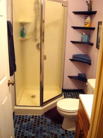 Leicester, Carolina del Norte: Angels Nest Retreat House Shower Bathroom