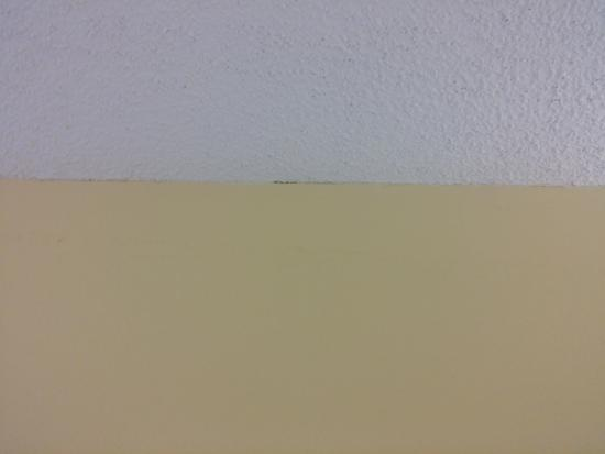 Batesville, MS: Mold growing along the ceiling/wall crevice.