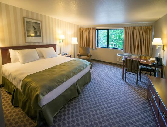 Riversage Billings Inn: Our Business King Room