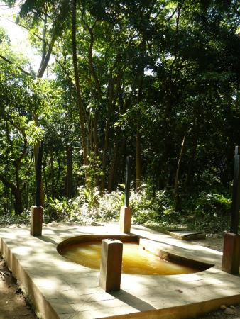 The Tamarind Tree Hotel & Restaurant: Sulphur Springs