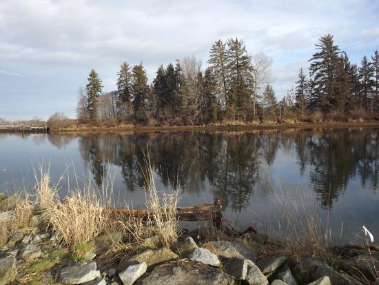 View across the Courtenay River