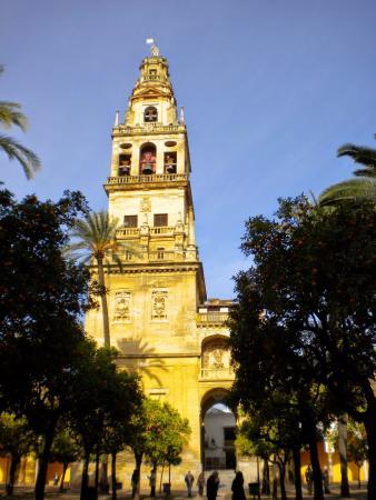 Patios de Córdoba: Torre de la Mezquita Catedral de Córdoba