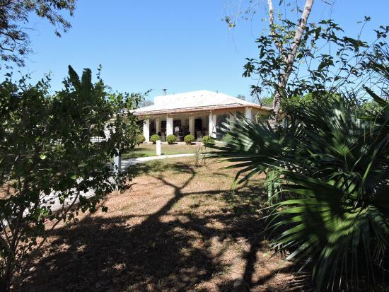 Boca Chica, Panama: The restaurant from garden area.