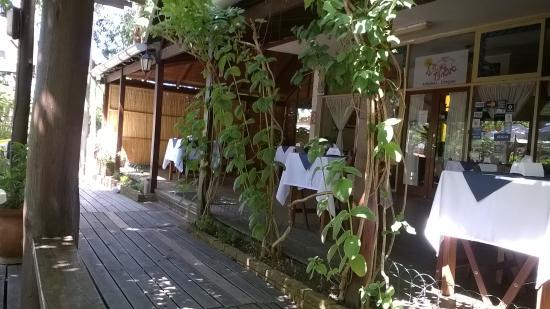 Hotel Playa Brava Photo