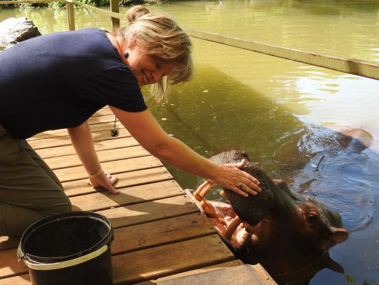Hoedspruit, جنوب أفريقيا: Loved petting Jessica!