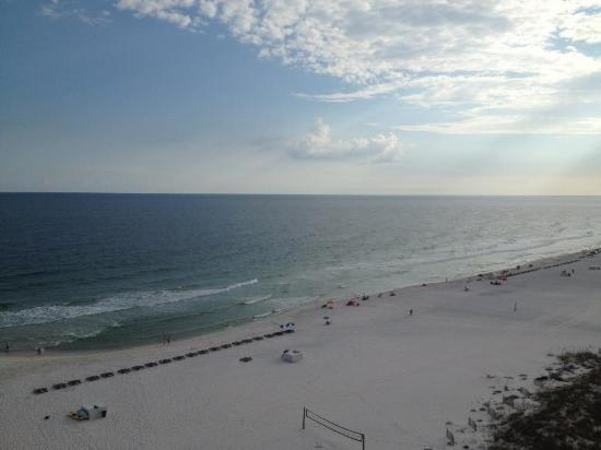 Hampton Inn & Suites Orange Beach: View from the room