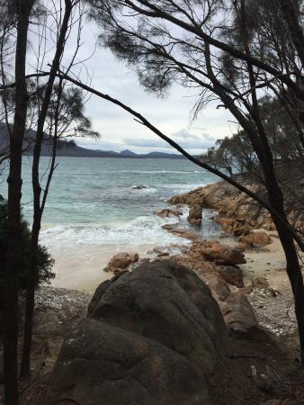 Coles Bay Foto