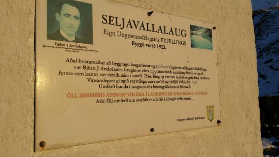 Skogar, Islandia: Seljavallalaug