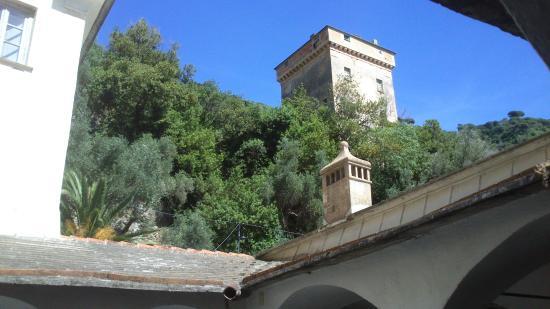 Zoagli, Italia: Si passa dal mare al verde dei sentieri che portano alla vetta di Portofino.