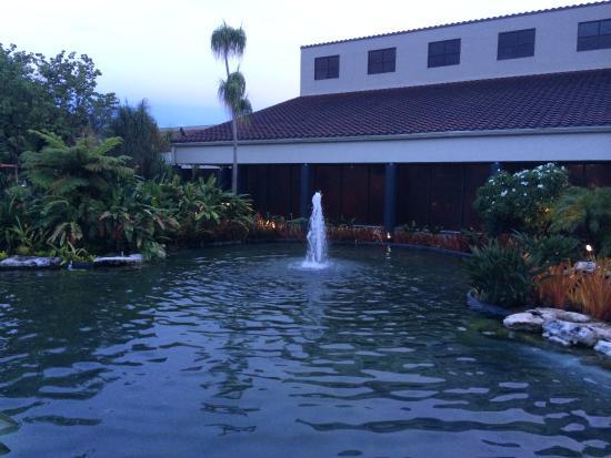 Miami Lakes, FL: Teich am Hotel