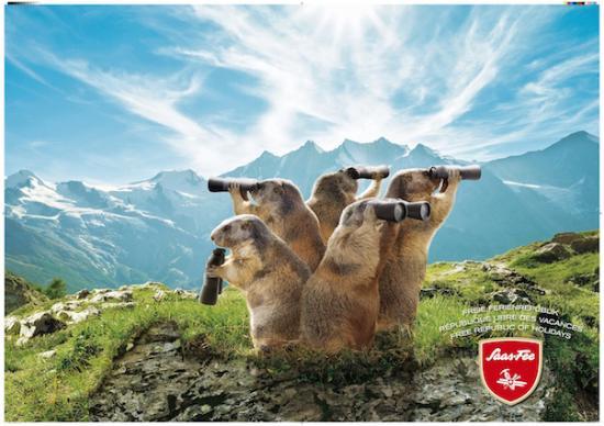 Saas-Almagell, Schweiz: Saaser Murmeltiere