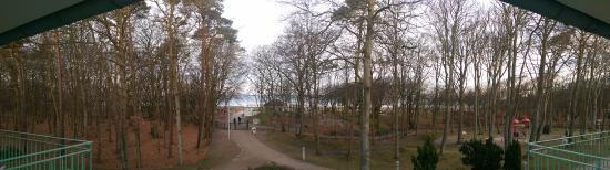 IFA Graal-Müritz Hotel Spa & Tagungen: Blick aus dem Zimmer gen Ostsee