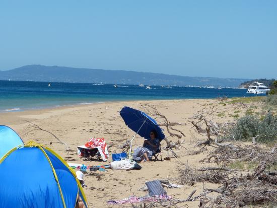 Portsea, ออสเตรเลีย: The accessible beach