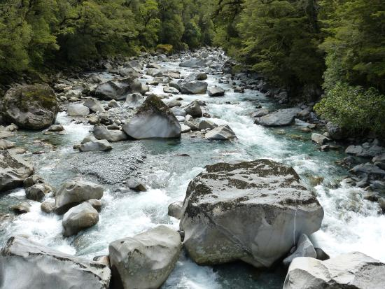 Fiordland National Park (Te Wahipounamu): River by the suspension bridge just outside Milford Sound