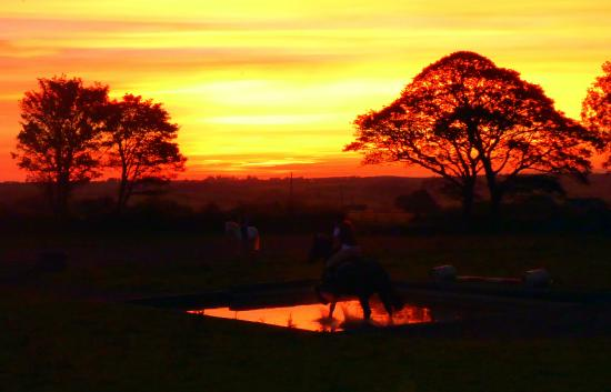 Ballina, Irlanda: Lucy riding through the Iceford water jump at sunset