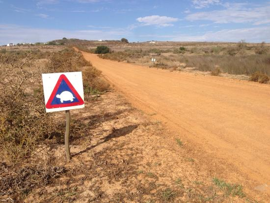 Yzerfontein, Republika Południowej Afryki: photo7.jpg