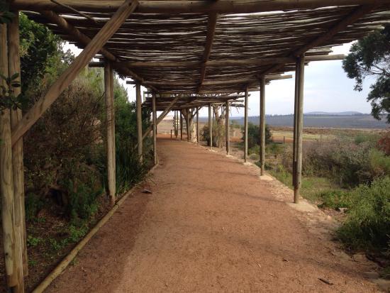 Yzerfontein, Republika Południowej Afryki: photo9.jpg
