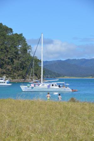 Paihia, New Zealand: The boat..