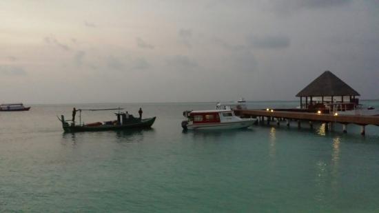 Dhaalu Atoll: 20160127_194206_large.jpg