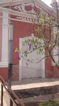 Passeio de Maria Fumaça até Mariana : IMG_20160207_134737229_large.jpg