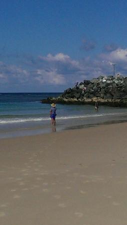 Tuncurry, Australien: IMAG2883_large.jpg