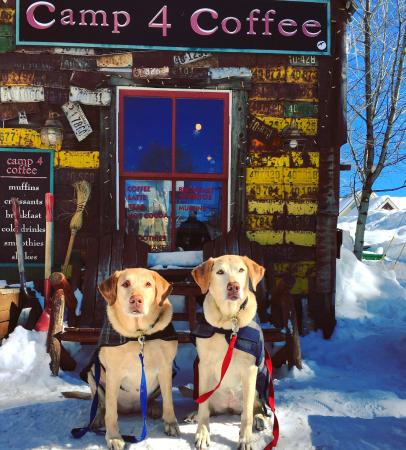 Camp 4 Coffee : Our girls on vaca