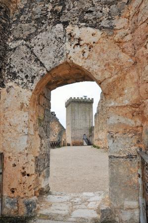 Peñaranda de Duero, España: Torre del Homenaje