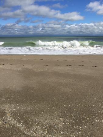 Ocean Village: photo0.jpg