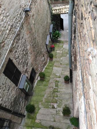 o adorável e encantador Vicenzo - Foto di Hotel Lieto Soggiorno ...