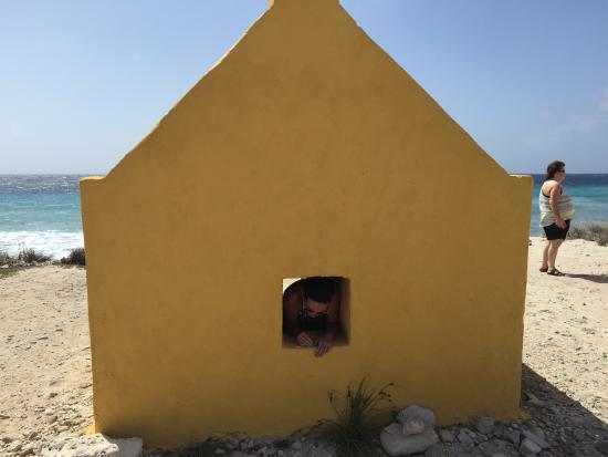 Kralendijk, Bonaire: photo3.jpg