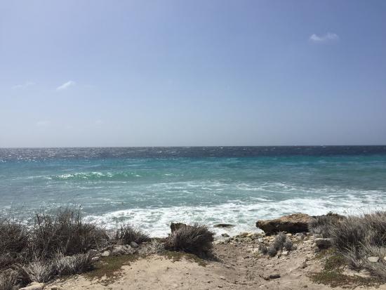 Kralendijk, Bonaire: photo4.jpg