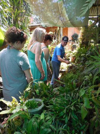 Província de Guanacaste, Costa Rica: great guided tour of the eco-preserve