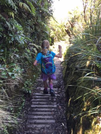 Stratford, Nueva Zelanda: Running back down