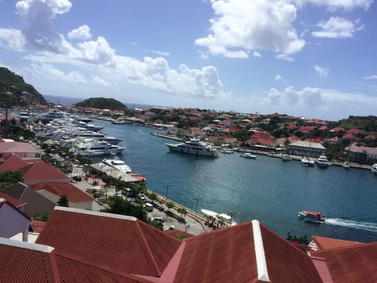 Scoobidoo: Port de St Barth
