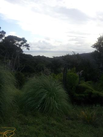 Île de Waiheke, Nouvelle-Zélande : The view is so relaxing