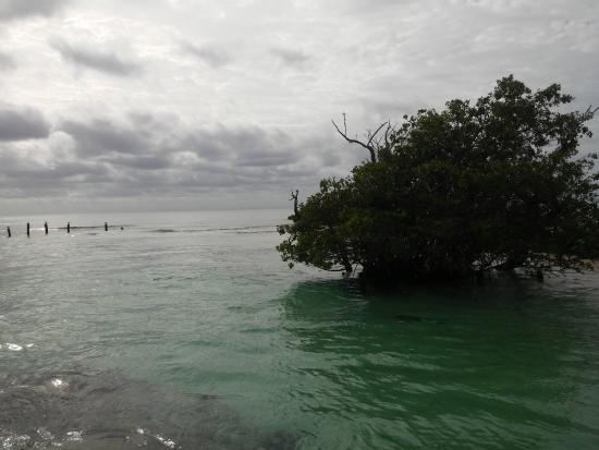 Hacienda Tres Rios: desembocadura del rio en la playa. panorama bellísimo.