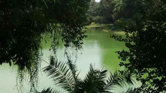 Parque da Aclimacao