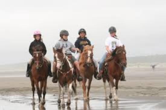 Kawartha Lakes, Canadá: Learn About Horses & Riding