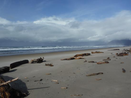 Manzanita, Oregón: beachcombing too