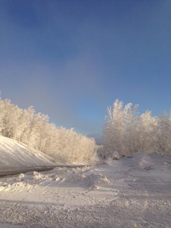Coldfoot, อลาสกา: photo1.jpg
