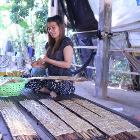 Battambang Province, Kamboja: Dry Banana